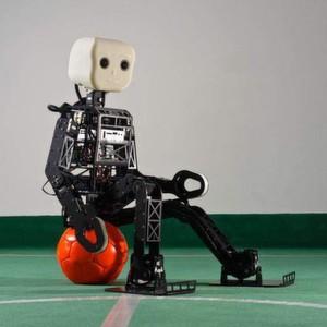 Der Fußballroboter NimbRo-OP misst rund 95 Zentimeter und wiegt 6,6 kg. Insgesamt sorgen 20 Antriebselemente und eine hohe Rechenleistung dafür, dass er sehr beweglich und reaktionsschnell ist. Mit seiner speziellen Weitwinkelkamera behält er den Überblick über das Fußballfeld.
