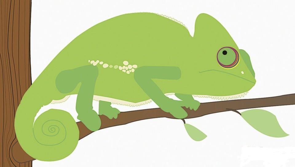 Suse wird mit einem grünen Chamäleon identifiziert.