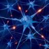 Wettrüsten für die virtualisierten Netzwerke der Zukunft