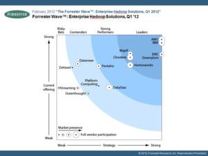 """Im Report """"The Forrester Wave: Enterprise Hadoop Solutions!"""" (Q1 2012) wird Pentaho als """"Strong Performer"""" ausgewiesen - ein aussagekräftiges Indiz, dass das aufstrebende Unternehmen auf dem richtigen Weg ist."""