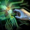 Passwortkrieg – alles klar zum Gefecht