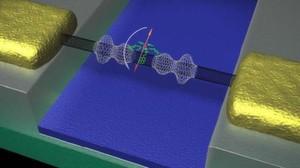 Der Spin des Moleküls (orange) klappt um und verformt das Nanoröhrchen (schwarz), das zwischen zwei Elektroden (gold) aufgespannt ist