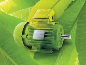 Die Motorenbaureihe W22 Super Premium ist in den Baugrößen 132 bis 355 erhältlich und entspricht der Norm DIN EN 50347.