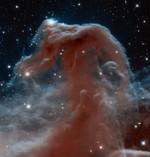 Der berühmte Pferdekopfnebel: Mit dieser Aufnahme feiert die NASA das 23. Jubiläum des Hubble Space Telescope