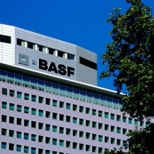 Basf stock options