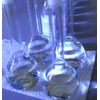 Die sieben häufigsten Fehler bei der Registrierung chemischer Stoffe