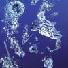 Richtig angepasster Reinigungsprozess erhöht Qualität und Wirtschaftlichkeit