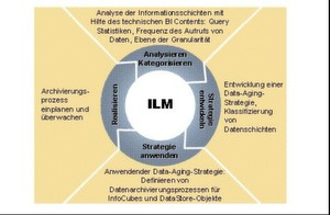 Aufbau eines Information Lifecycle Systems