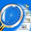 Ohne Datenbanksystem die richtigen Daten finden