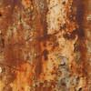 Biologische Rostentfernung von metallischen Oberflächen