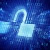 Erneut Internetseiten von Regierungen gehackt