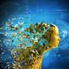 Splunk App for VMware soll für Durchblick in der Virtualisierung sorgen