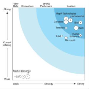 """Der Forrester-Wave-Breicht über """"Big Data Hadoop Solutions"""" stammt aus diesem Frühjahr."""