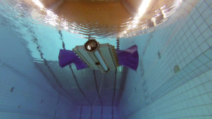 Testversuch an der ETH Zürich: «Sepios» treibt sich durch den Pool.