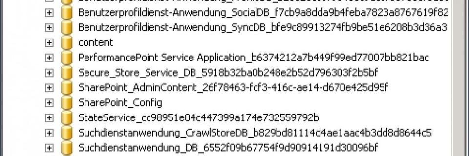 SharePoint-Datenbanken auf SQL-Servern