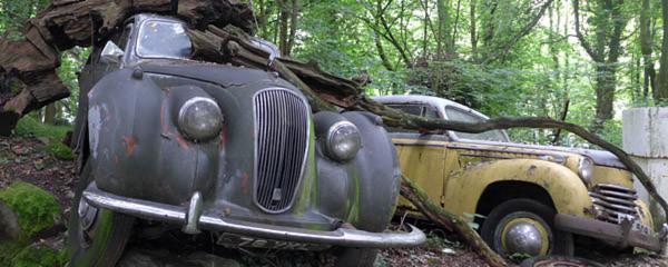 Automobilfriedhof: Ruhe in Rost