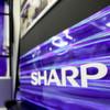 Sharp mit Gewinnrückgang
