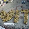Wien sagt Ja zur Informationstechnologie
