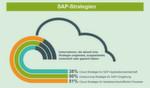 Laut PAC-Studie haben 38 Prozent der befragten Unternehmen eine Cloud-Strategie für die SAP-Applikationslandschaft, jedes zweite Unternehmen verfolgt eine Outsourcing-Strategie für ihre SAP-Umgebung. Auch bei betriebswirtschaftlichen Prozessen spielt die Cloud eine immer wichtigere Rolle.