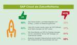 SAP Cloud als Zukunftsthema: Allen voran das Thema System- und Datenintegration wird künftig an Bedeutung gewinnen. SAP SaaS spielt eher als Ergänzung der bestehenden SAP-Software eine Rolle.