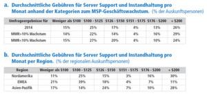 Wie viel Geld berechnen Sie pro Monat pro Gerät durchschnittlich für kontinuierlichen Server-Support und -Instandhaltung?