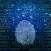 Starke und sichere Online-Authentifizierung