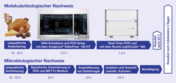 Einsatz der Real-Time-PCR in der Salmonellen-Analytik