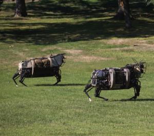 Boston Dynamics Roboterfamilie bekommt Zuwachs