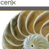 CENX und Spirent orchestrieren VoLTE
