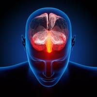 Neues Krankheitsgen für frühkindliche Epilepsie entdeckt