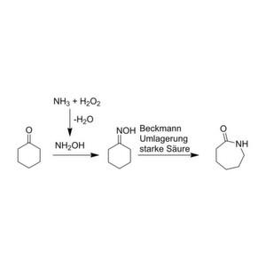 Kostengünstige Bio-Kaskade für Caprolactam-Synthese