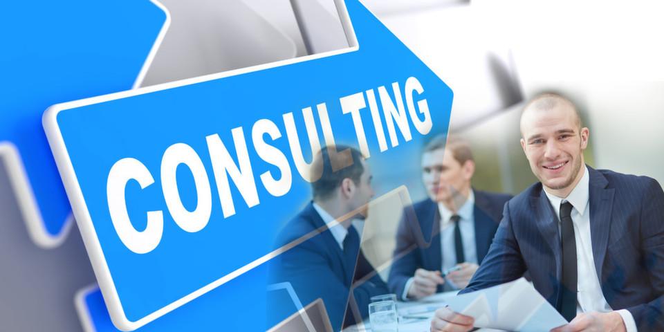 IT-Berater sind für den Erfolg von eGovernment unerlässlich