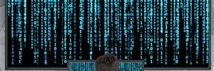 DBMS à la Open Source mischen den Markt auf