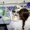 TU9-Universitäten formulieren Leitlinien für faire Beschäftigungsverhältnisse