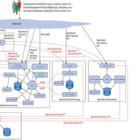 Kann sich OpenStack als Cloud-Computing-Alternative durchsetzen?
