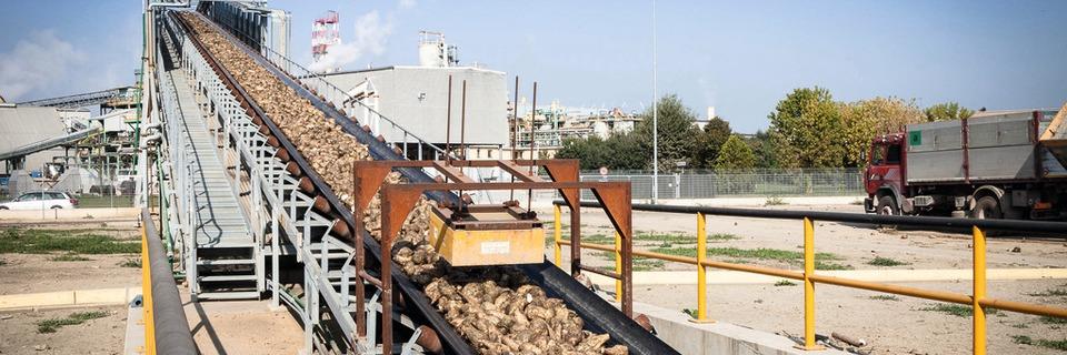Vollautomatische Qualitätsanalyse von Zuckerrüben