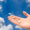 Sicheres Key Management in der Cloud