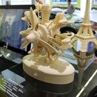 L'impression 3D est une tendance mondiale