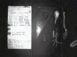 Bei der Renovierung seines Hauses in Surrey hat der Brite David Martin das Skelett einer Brieftaube entdeckt, an das auf dünnem Papier der Nachrichtencode gebunden war. Es wird vermutet, dass die Botschaft um den 6. Juni 1944 herum verschickt wurde, dem Datum der Invasion der Alliierten in der Normandie. Für diesen Tag hatte der britische Premier Winston Churchill strengste Funkstille verodnet.
