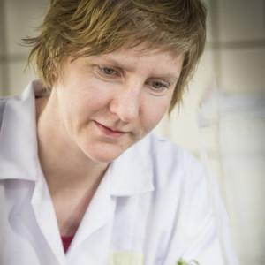 Grazer Biochemiker klären Lignin-Biosynthese