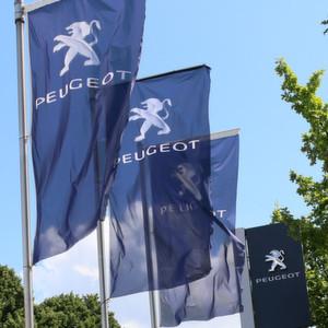 Peugeot Österreich: Streit mit Händlern eskaliert