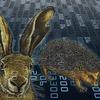 Wettlauf von Cyber-Igel und Cyber-Hase