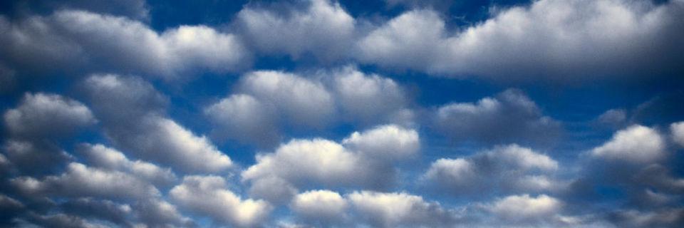 Bei Octostor erhält jeder Kunde seine eigene, isolierte Cloud.