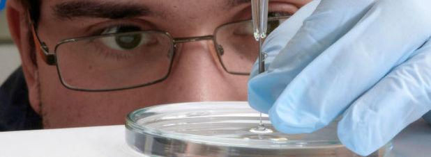 Bessere Katalysatoren für bessere Brennstoffzellen