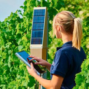 Intel IoT Smart Vineyard: Zusammen mit dem Nürnberger Technologieunternehmen MyOmega betreibt Intel das Pilotprojekt TracoVino, eine intelligente Lösung für umweltschonenden und effizienten Weinanbau.