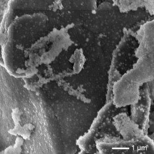 Ewige Jugend für Lithium-Ionen-Akkus?