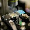 Forscher nutzen erstmals Laser zum Tiefkühlen von Wasser