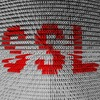 Sicheres Internet trotz SSL