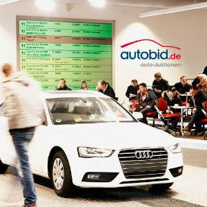 Auktion & Markt: Erfolgreichstes Jahr in der Firmengeschichte