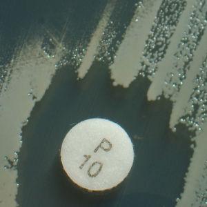 Beispiel eines klassischen Agardiffusionstests. Auf einen Nährboden wird die zu testende Bakteriensuspension gegeben und im Anschluss mit Testplättchen beschickt, die definierte Antibiotika-Konzentrationen enthalten. Nach Inkubation entsteht ein sog. Hemmhof, wenn der bakterielle Erreger empfindlich gegenüber dem Wirkstoff ist.
